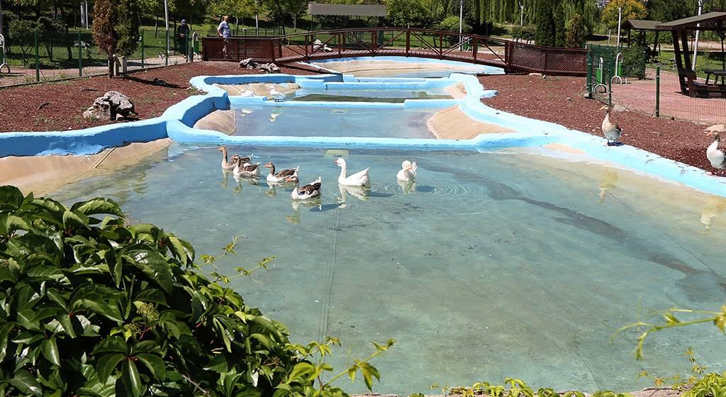 فضای زیبای دانشگاه کارابوک
